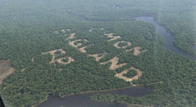 paddy-power-world-cup-rainforest-640x350